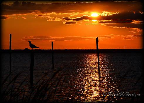 Sunset over the bay by Terri K Designs