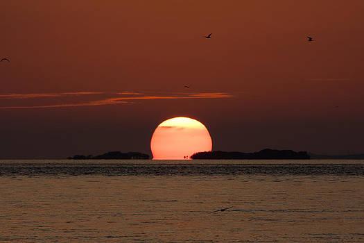 Adam Romanowicz - Sunset over the Keys