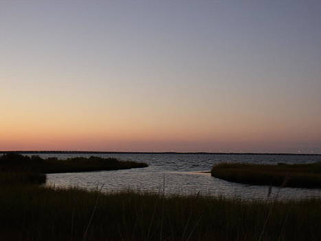 Sunset over the Marsh  by Terrilee Walton-Smith