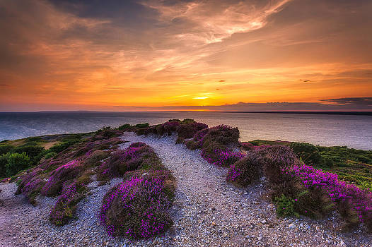 English Landscapes - Sunset Trail