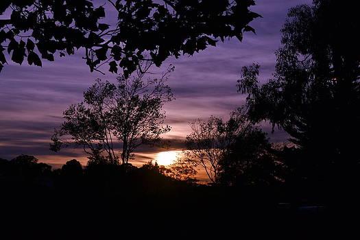 Sunset Purple Sky by Saifon Anaya