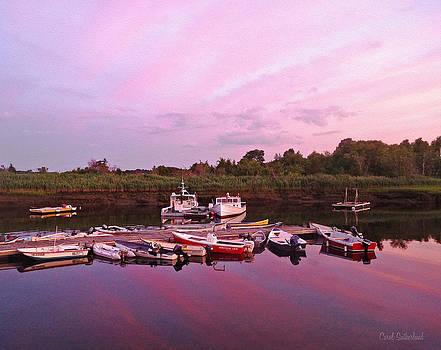 Sunset Reflection by Carol Sutherland