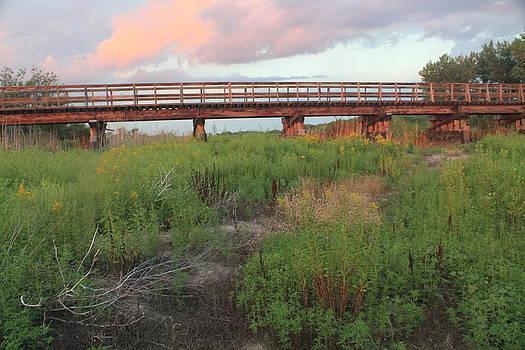 Sunset River Bridge by Alicia Knust