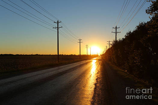 Sunset Road by David Lee