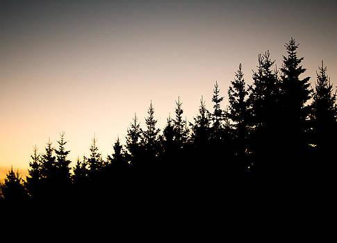 Sunset by Robert Hellstrom