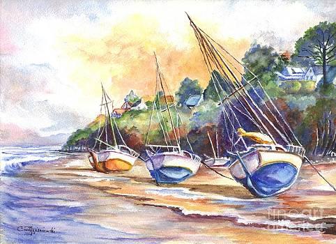Sunset Sail on Brittany Beach  by Carol Wisniewski
