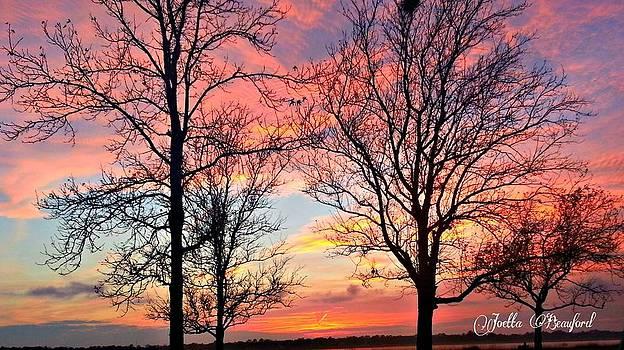 Sunset Shadow by Joetta Beauford
