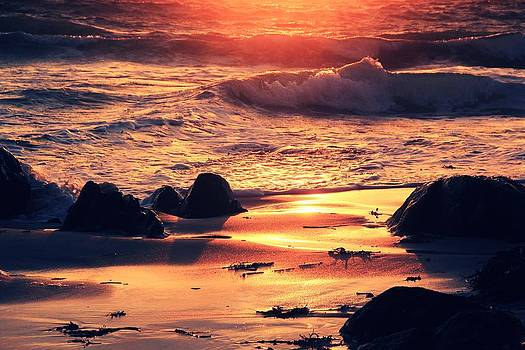 Sunset Shore by Anne Macdonald