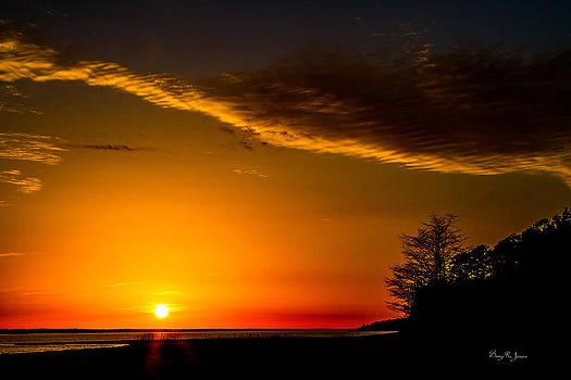 Barry Jones - Landscape - Sunset - Sunset Silhouettes