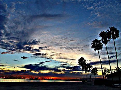 Sunset Sky  by Raymond Mendez