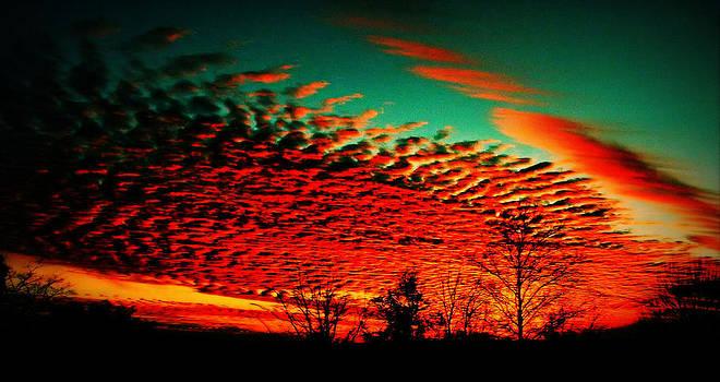 Sunset by Slawek Sepko