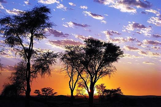 Sunset splendour by Liudmila Di