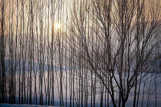 Sunset by Stephanus Le Roux