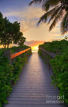 Sunset Walkway by Kelly Wade