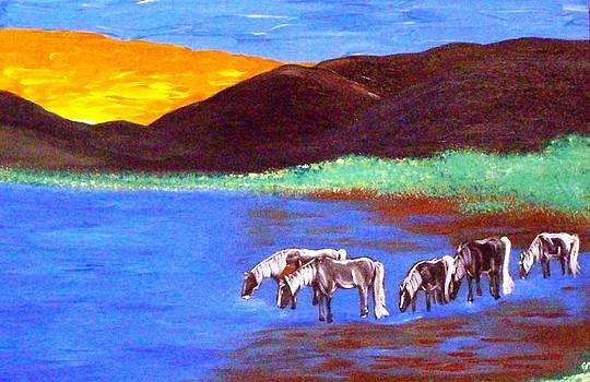 Sunset Water by Lynette  Swart