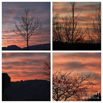 Sunsets come in many colors  by Linda Xydas