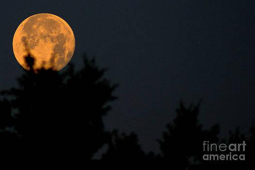Super Moon by Andre Boykin