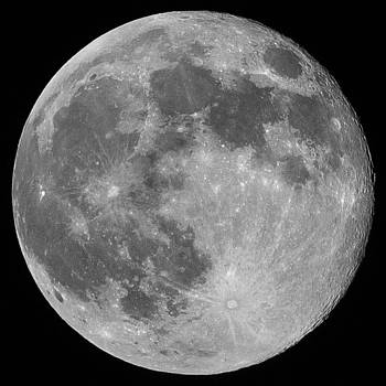Super Moon June 2013 by Amber Flowers