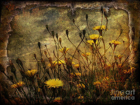 Surf and yellow flowers by Jim Wright
