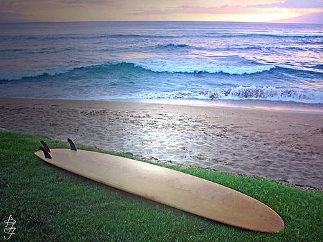 Surf the Hawaiian Sunset by Brooke Fuller