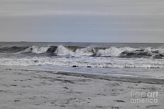 Surfers Delight by Denise Pohl