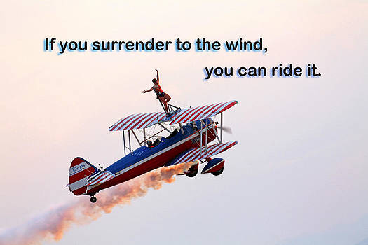 Surrender to the Wind by Mike Flynn