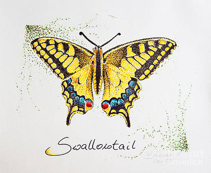 Swallowtail - Butterfly by Katharina Filus