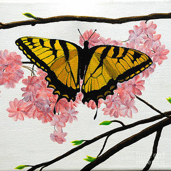 Swallowtail in Cherry Blossoms by Jane Axman