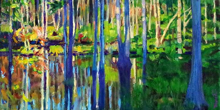 Swamp Ballet by Wayne Fair