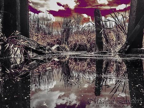 Swamp Divinity by Micheal Landers