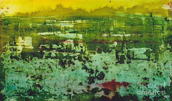 Swamp by Louise Lamirande