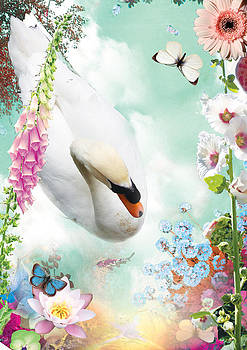 Swan and flowers by Emily Campbell