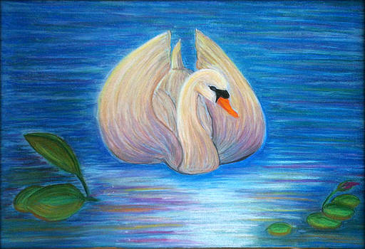 Swan in the canal by Beril Sirmacek