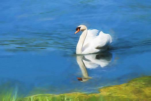 Swan Lake by Beckie Fitgerald