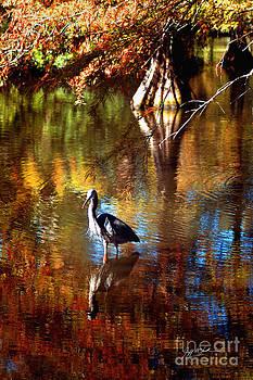 Jeff McJunkin - Swan Lake Heron II