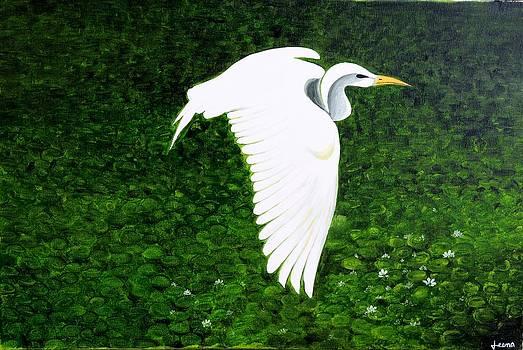 Swan-Oil Painting by Rejeena Niaz