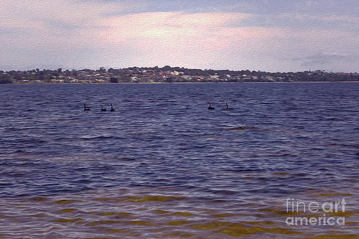 Swan River IX by Cassandra Buckley