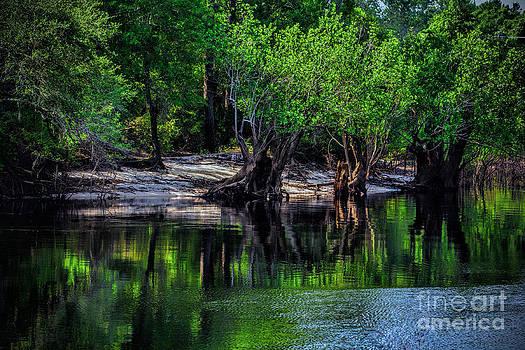 Dave Bosse - Swanee River