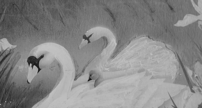 Anne-Elizabeth Whiteway - Swans and Cygnet Sketch