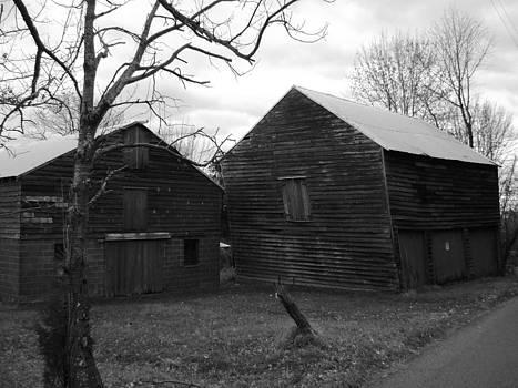 Swaying Barn by William Vivian