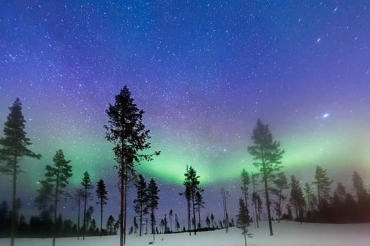 Sweden Aurora by Kay Price