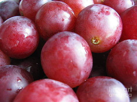 Sweet Grapes. Photo #01 by Ausra Huntington nee Paulauskaite