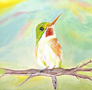 Sweet Rainbow Bird by Cathy Turner