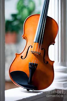 Sweet Strings of V by Valerie Morrison