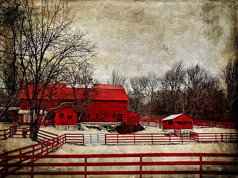 Pamela Phelps - Sweet Winter Farm