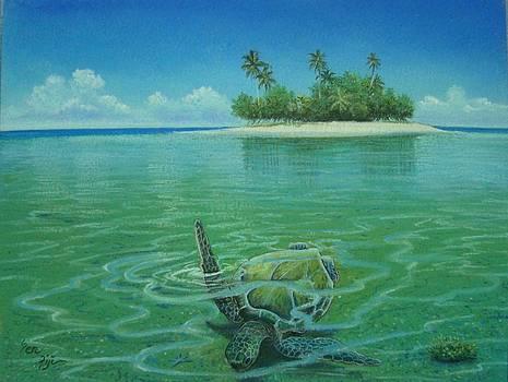 Swim Away by Pravin  Sen