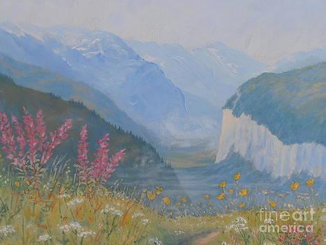 Swiss Wildflower Meadow Above Lauterbrunnen Valley by Elaine Jones