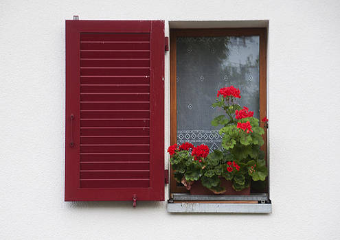 Swiss Window by Sharon Sefton