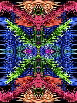 Amanda Collins - Symmetric