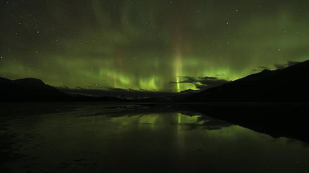 Symphony of Light by Lisa Hufnagel